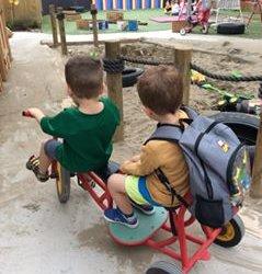 Pukeko playground